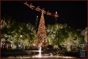 7-Christmas-Tree